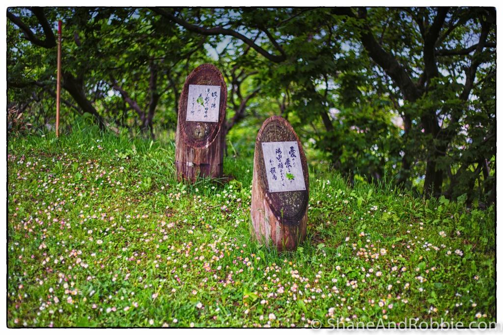2014-06-14-20140614-00092(Canon EOS 6D)