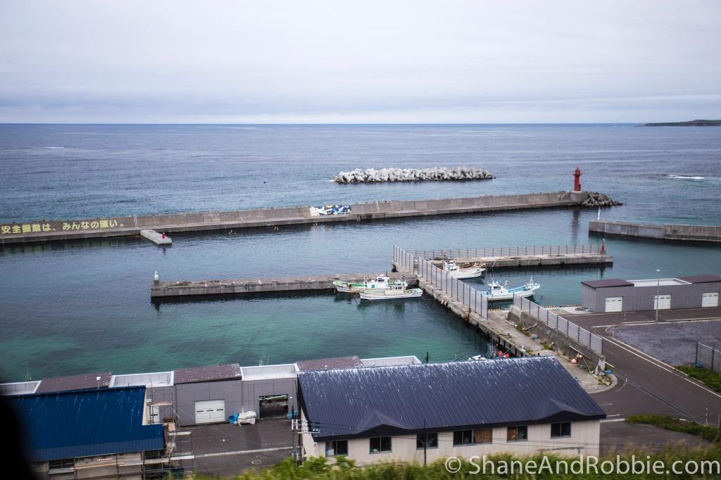 2014-06-15-20140615-00011(Canon EOS 6D)