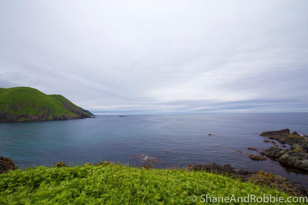 2014-06-15-20140615-00021(Canon EOS 6D)