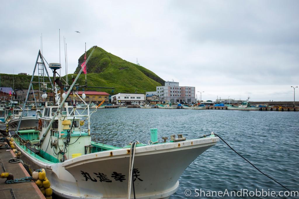 2014-06-17-20140617-00007(Canon EOS 6D)