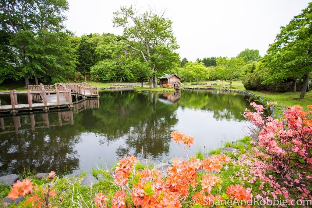 2014-06-17-20140617-00010(Canon EOS 6D)