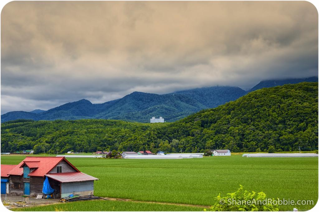 2014-06-20-20140620-00006(Canon EOS 6D)