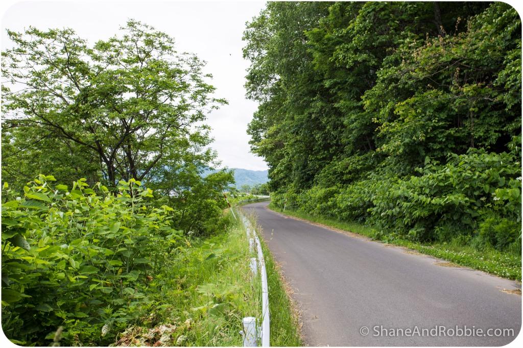 2014-06-20-20140620-00008(Canon EOS 6D)