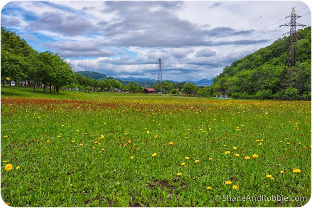 2014-06-20-20140620-00013(Canon EOS 6D)