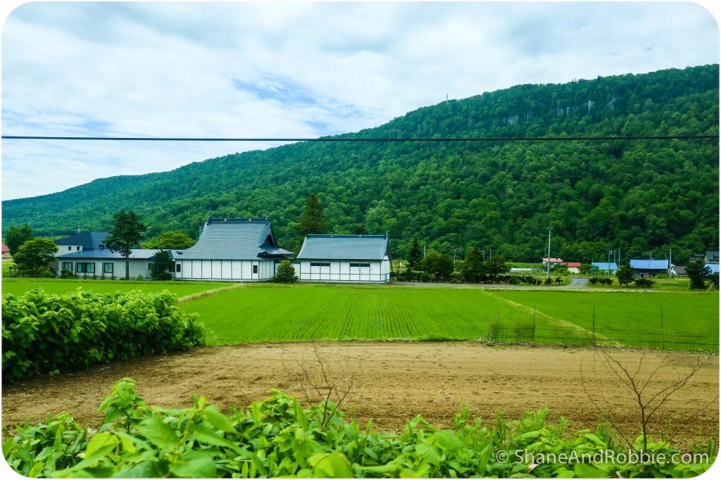 2014-06-22-20140622-00016(Canon EOS 6D)