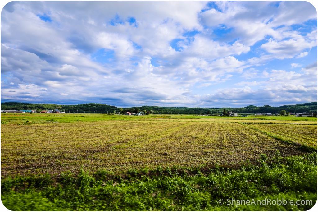 2014-06-22-20140622-00099(Canon EOS 6D)