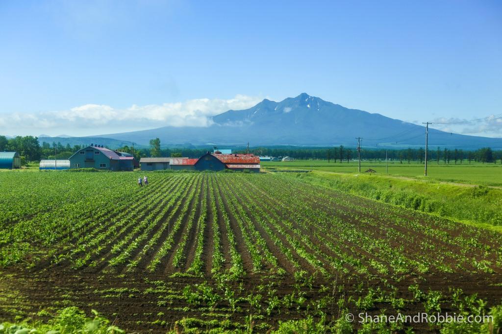 2014-06-24-20140624-00013(Canon EOS 6D)
