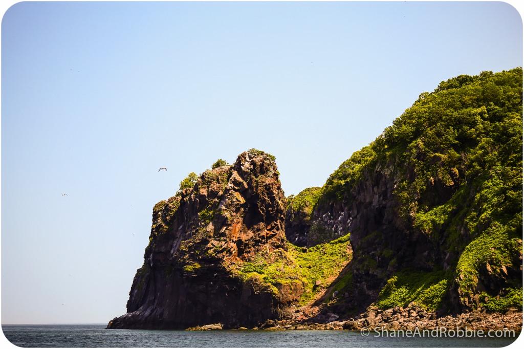 2014-06-25-20140625-00003(Canon EOS 6D)
