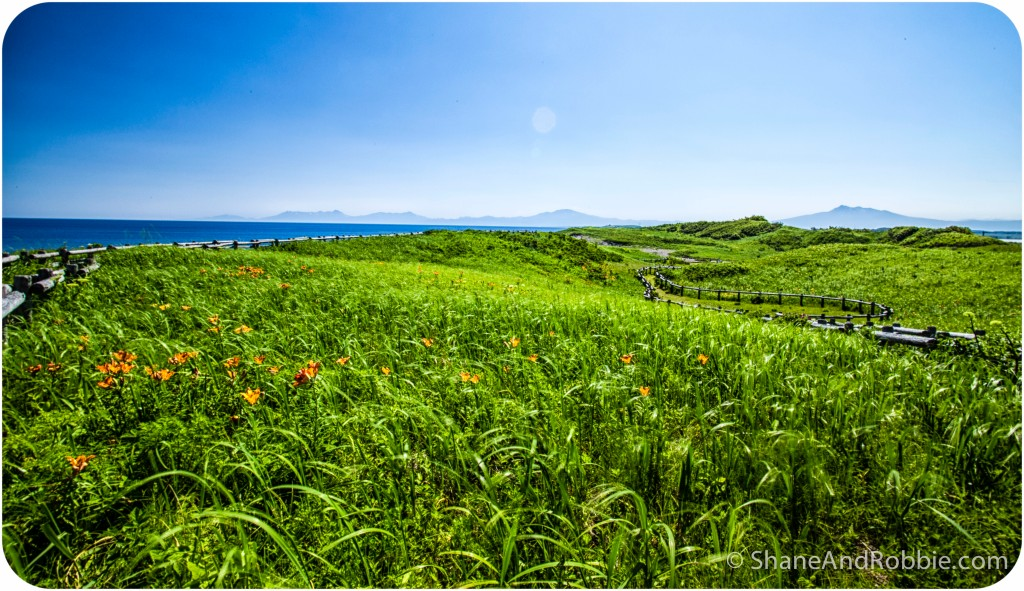 2014-06-26-20140626-00026(Canon EOS 6D)
