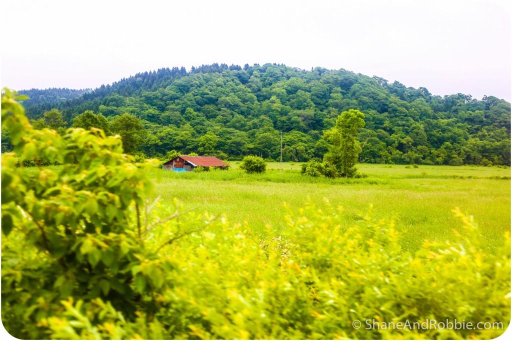 2014-06-27-20140627-00004(Canon EOS 6D)